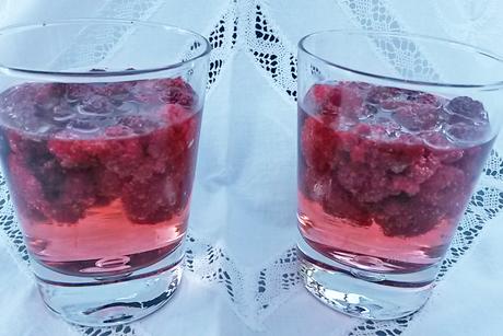 gin-tonic-mit-himbeeren.jpg