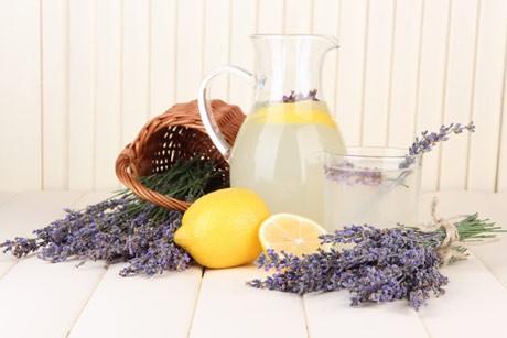 lavendel-limonade.jpg