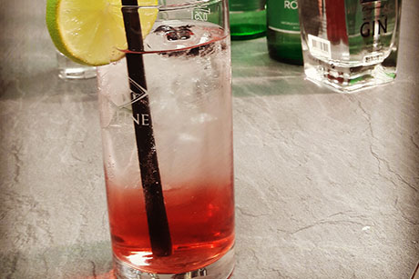schiler-gin.jpg