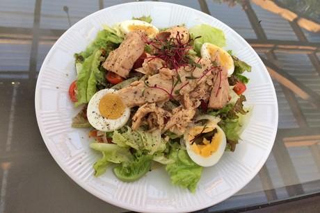 gemischter-salat-mit-thunfisch.jpg