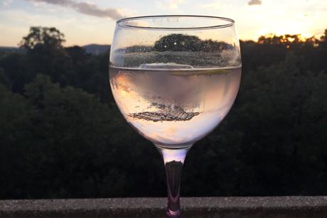 pink-gin-tonic.jpg