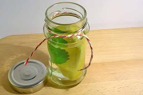 zitronenmelisse-ananaswasser.jpg