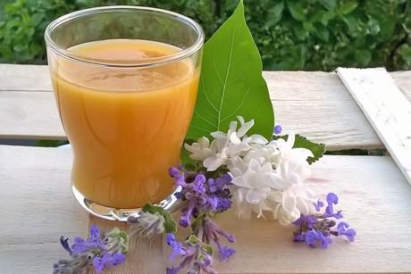 marillen-flieder-smoothie.png