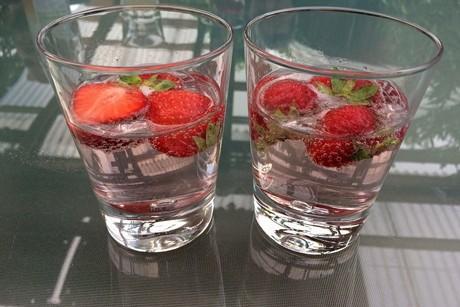 gin-tonic-mit-erdbeeren.png