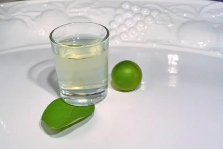 wodka-limetten-shot.png