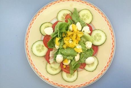 fitnesssalat-mit-tomaten-gurken-paprika-und-mozzarella.png