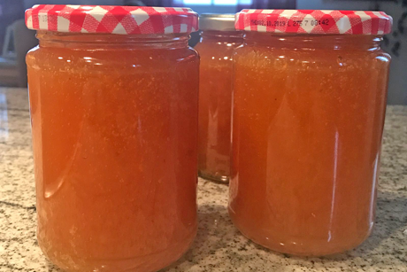 pfirsich-marmelade.png