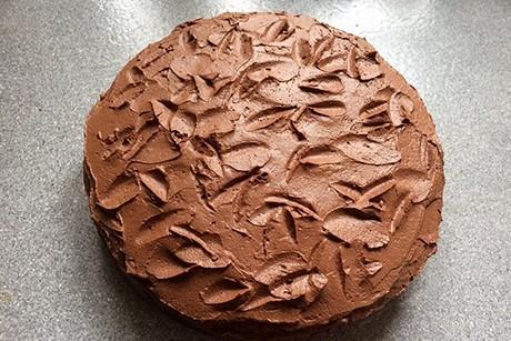 schoko-nuss-torte-mit-schokocreme.png