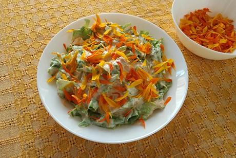 gruner-salat-mit-marillendressing.png