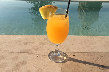 orangen-melonen-traum.png