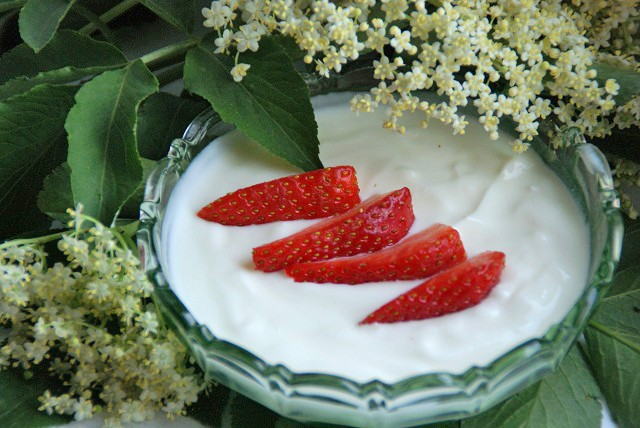holunderbluetenbuttermilchkaltschale-mit-erdbeeren.jpg